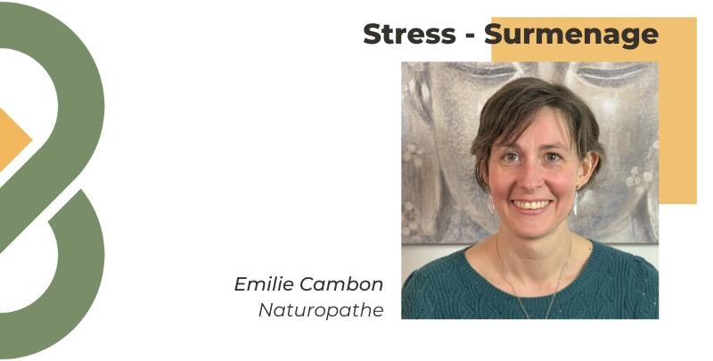 Comment se relier à la nature pour vaincre le stress ?